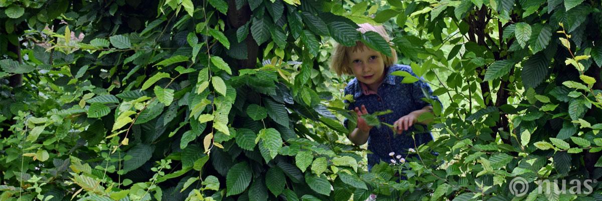 nuas NaturSpielRäume: Das Kind ist Akteur seiner Entwicklung
